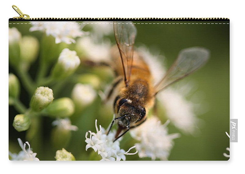Wasp Carry-all Pouch featuring the photograph Bee On White by Angela Rath