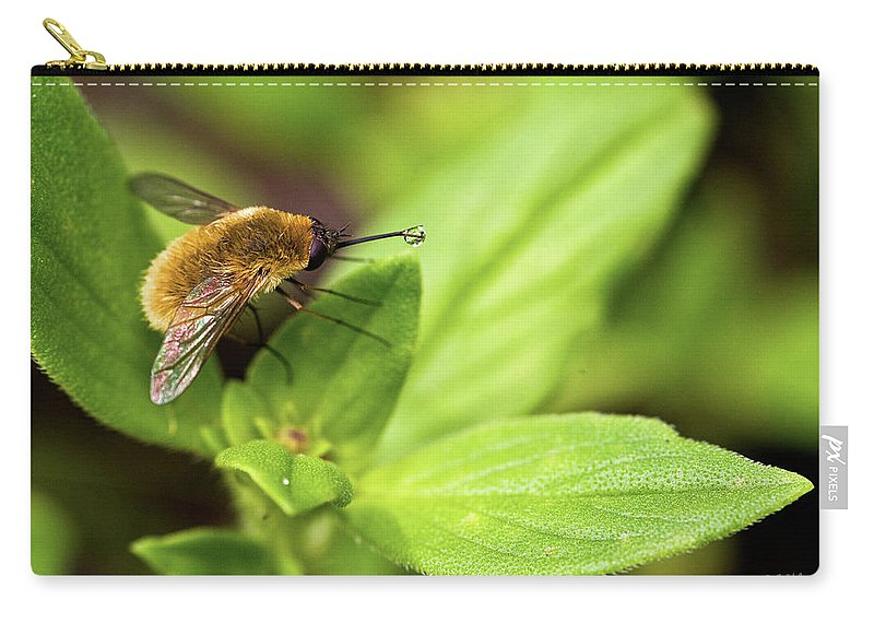 Beefly Carry-all Pouch featuring the photograph Beefly by Christopher Holmes