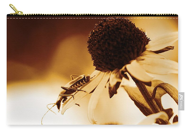 Leatherwing Carry-all Pouch featuring the photograph Beetle And Black Eyed Susan by Angela Rath