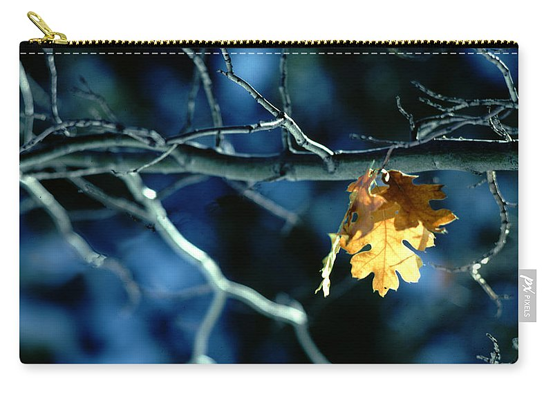 Photography Carry-all Pouch featuring the photograph Before The Fall by Paul Wear