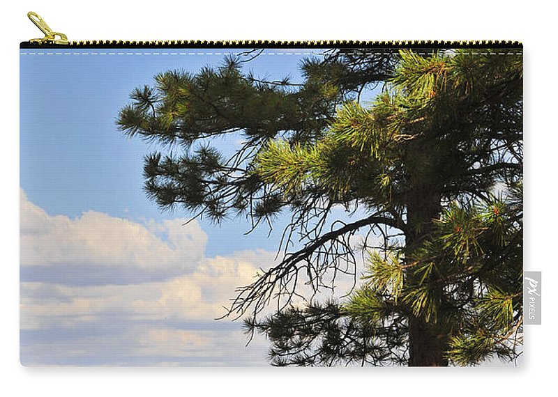 Behold Carry-all Pouch featuring the photograph Behold 2 by Skip Hunt