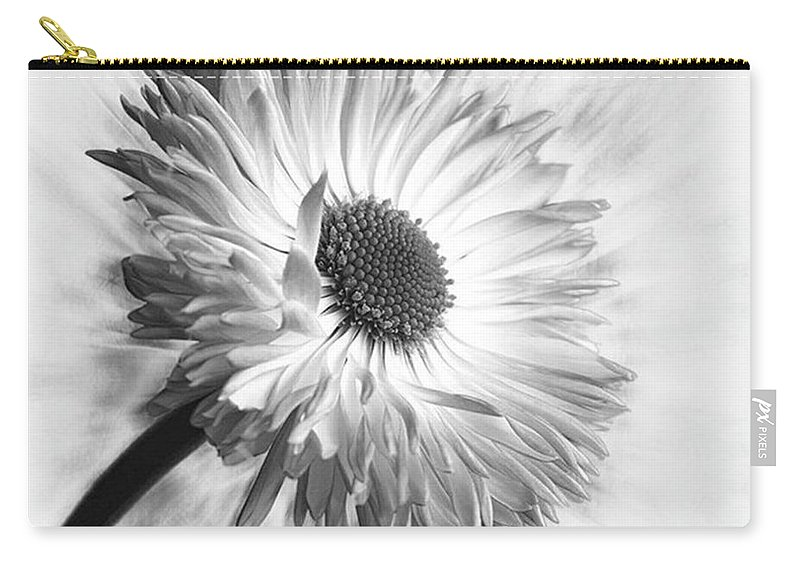 Beautiful Carry-all Pouch featuring the photograph Bellis In Mono  #flower #flowers by John Edwards