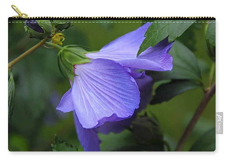 Rose-of-sharon Carry-all Pouch featuring the photograph Beneath The Willow by Michiale Schneider