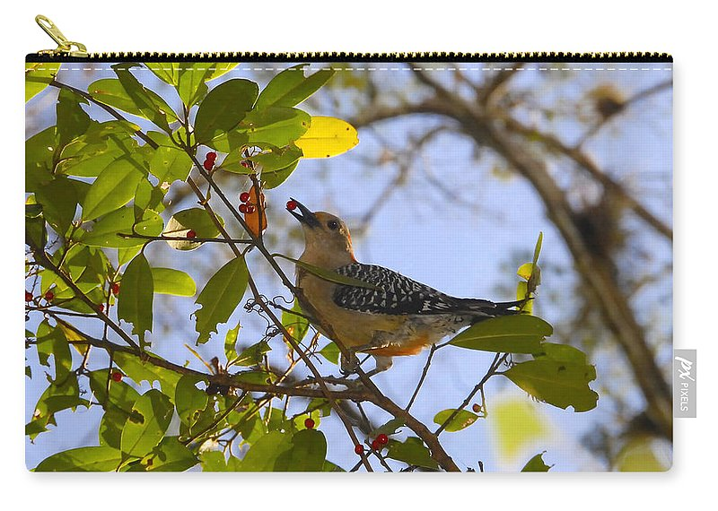 Woodpecker.red Belled Woodpecker Carry-all Pouch featuring the photograph Berry Good Woodpecker by David Lee Thompson