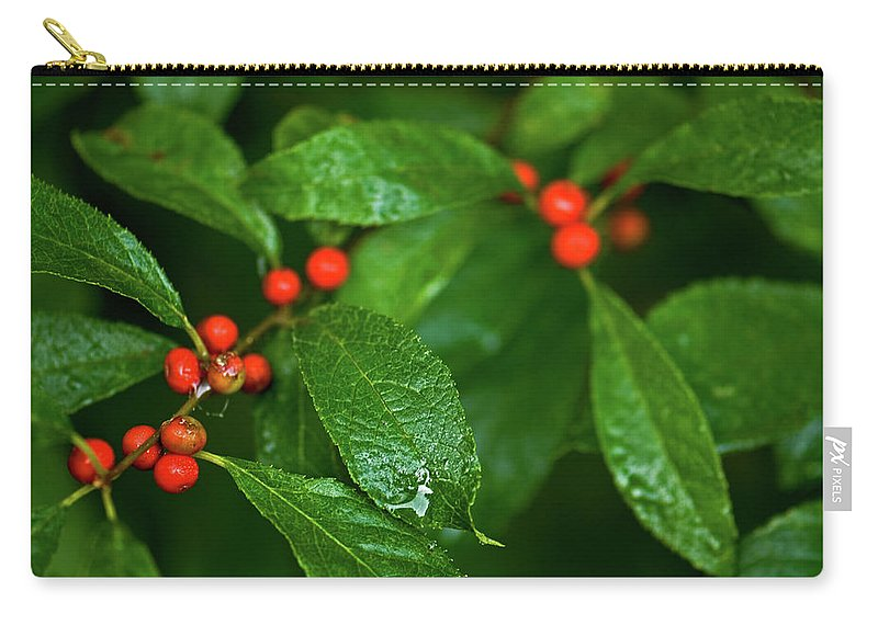 wild Berry's Carry-all Pouch featuring the photograph Berry's by Paul Mangold