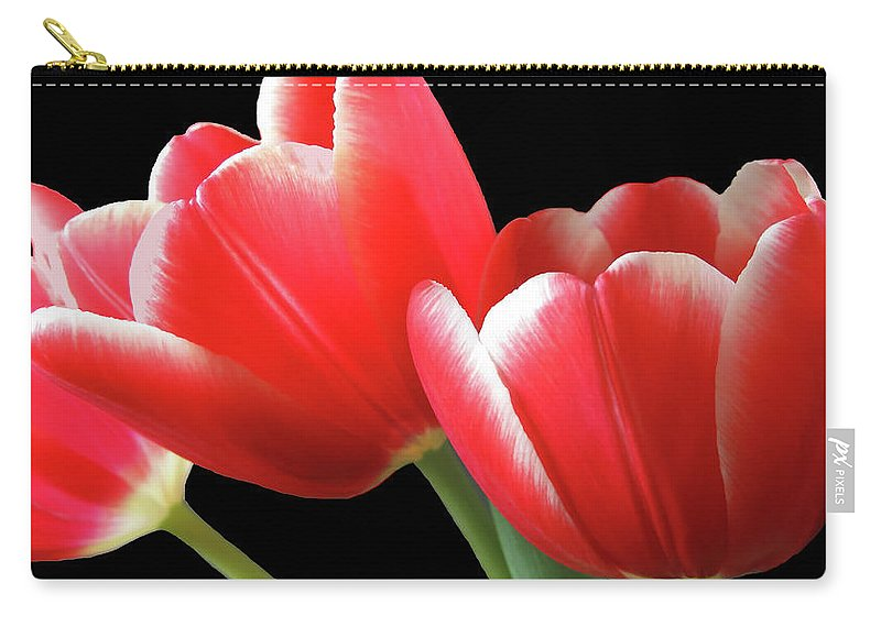 Tulips Carry-all Pouch featuring the photograph Best Friends by Johanna Hurmerinta