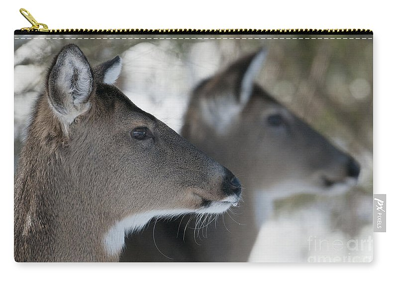 Deer Carry-all Pouch featuring the photograph Best Friends by Sandra Bronstein
