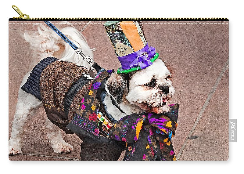 Dog Carry-all Pouch featuring the photograph Best In Show by Nick Eagles
