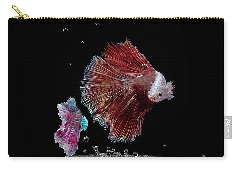 Animal Carry-all Pouch featuring the photograph Betta0916 by Bang Yos