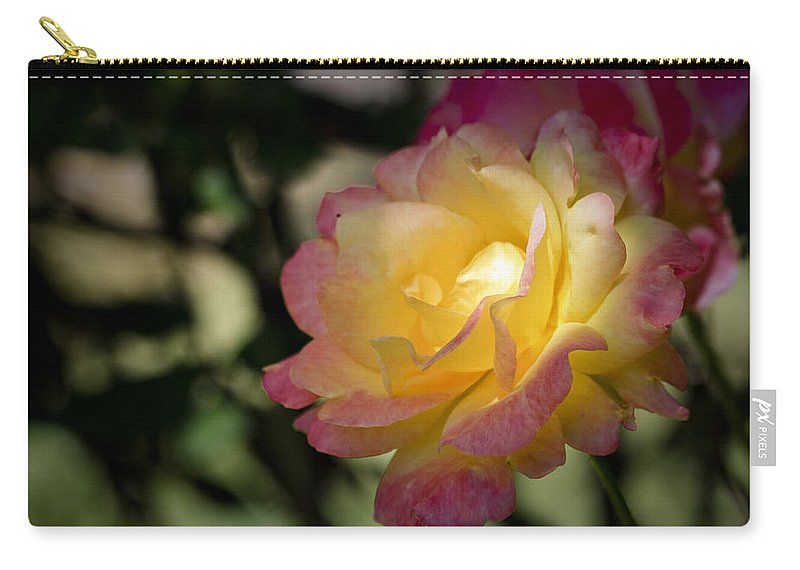 Rose Carry-all Pouch featuring the photograph Bettys Rose by Teresa Mucha