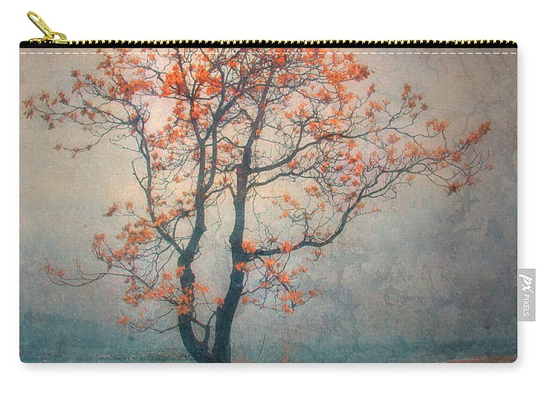 Seasons Carry-all Pouch featuring the photograph Between Seasons by Tara Turner