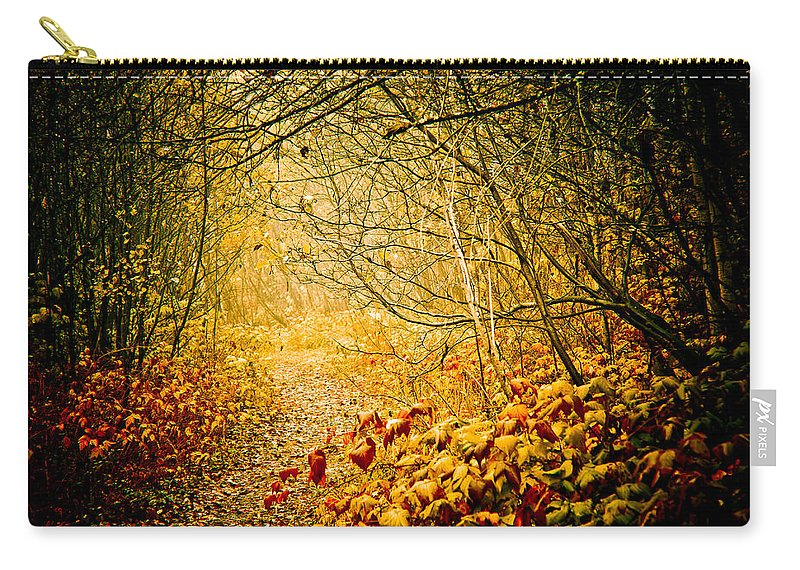 Mystery Carry-all Pouch featuring the photograph Beyond by Maggie Terlecki