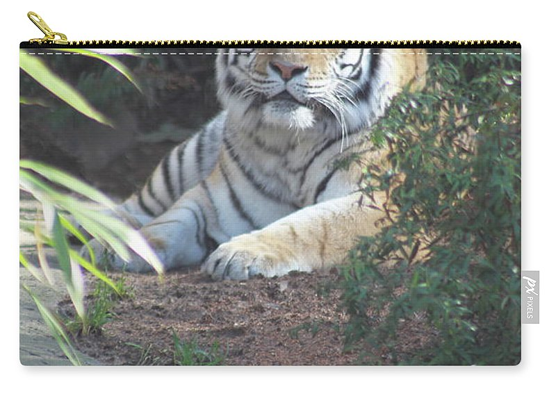 Amur Carry-all Pouch featuring the photograph Beyond The Branches by Laddie Halupa