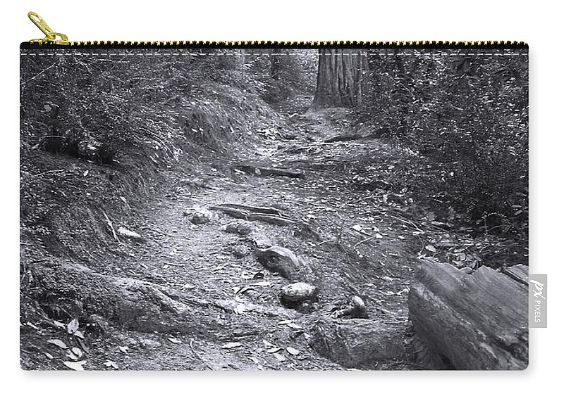 Landscape Carry-all Pouch featuring the photograph Big Basin Redwoods Sp 1 by Karen W Meyer