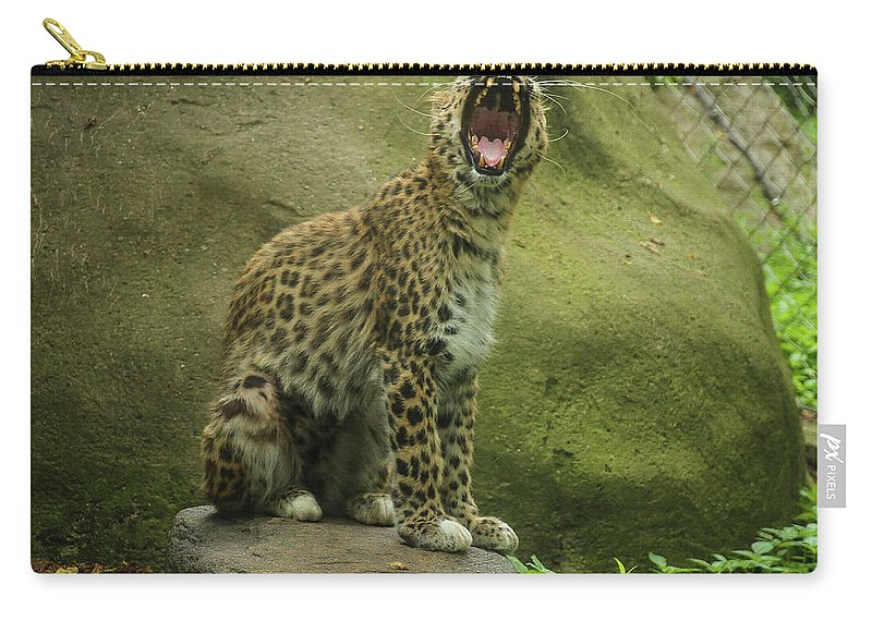 Erie Carry-all Pouch featuring the photograph Big Cat, Big Yawn by Ron Vollentine