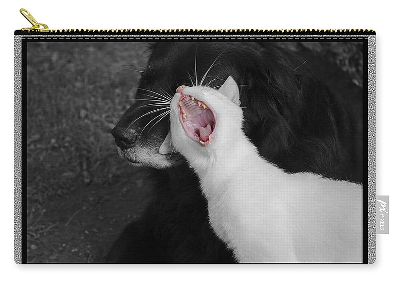 Cat Carry-all Pouch featuring the photograph Big Mouth Pete by Andrea Swiedler