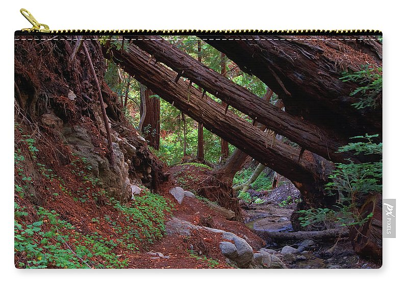 Big Sur Carry-all Pouch featuring the photograph Big Sur Redwood Canyon by Charlene Mitchell