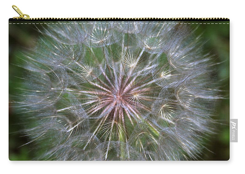 Dandelion Carry-all Pouch featuring the photograph Big Wish by Linda Sannuti