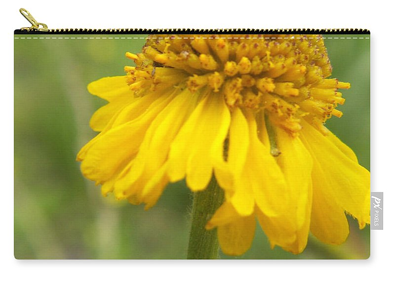 Flower Carry-all Pouch featuring the photograph Bigelow by Amy Fose