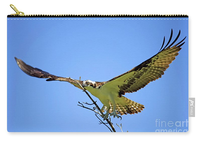 Osprey Carry-all Pouch featuring the photograph Bigger Then Me by Deborah Benoit