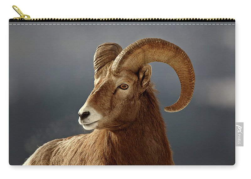 Rocky Mountain Carry-all Pouch featuring the digital art Bighorn Sheep In Winter by Mark Duffy