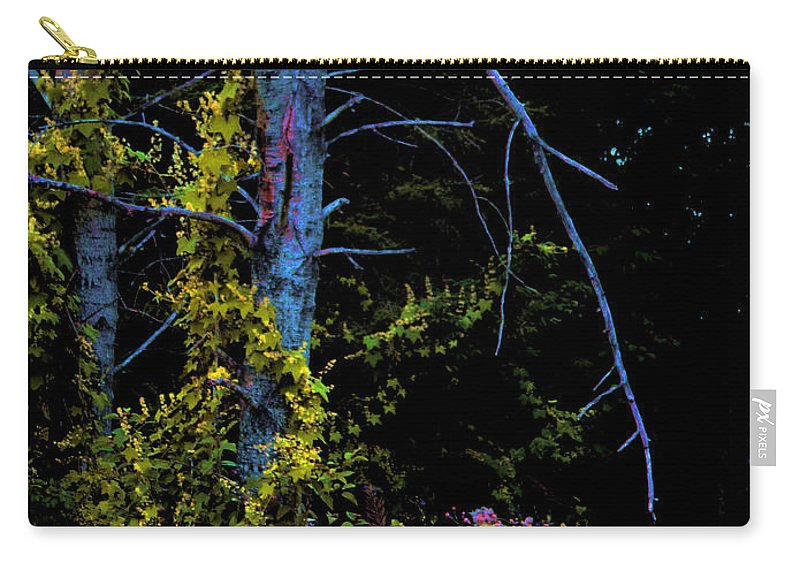 Birch Trees In Summer Carry-all Pouch featuring the photograph Birch And Vines by Joanne Smoley