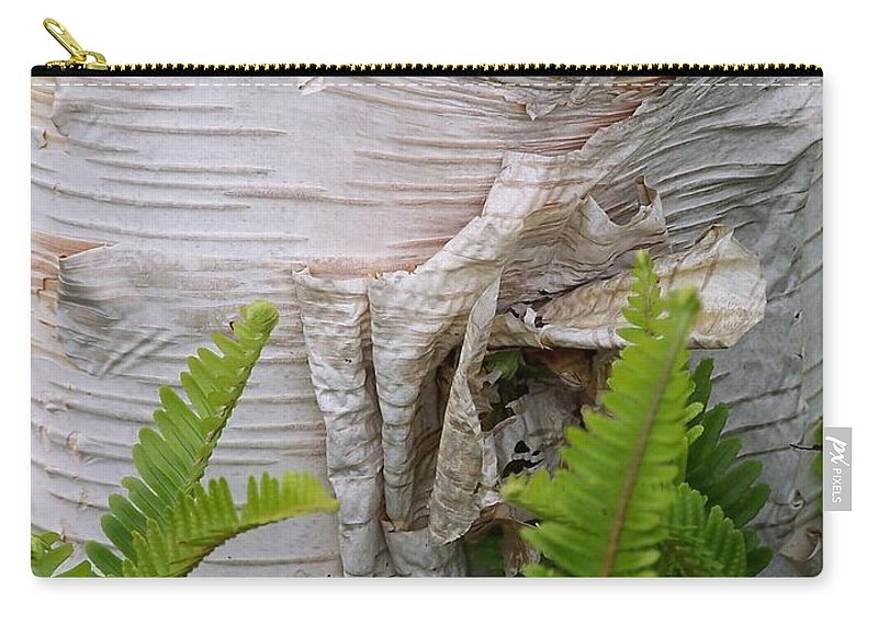 Tree Carry-all Pouch featuring the photograph Birch Fern by Gale Cochran-Smith