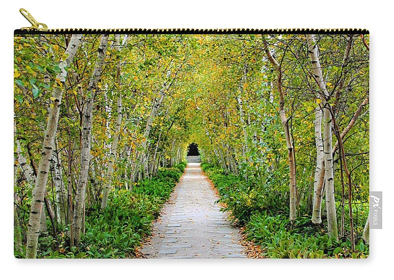 Pathway Carry-all Pouch featuring the photograph Birch Pathway Perspective by Kristin Elmquist