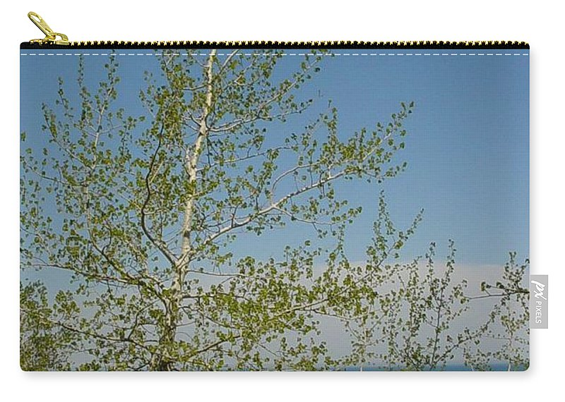 Birch Tree Carry-all Pouch featuring the photograph Birch Tree Over Lake by Anita Burgermeister