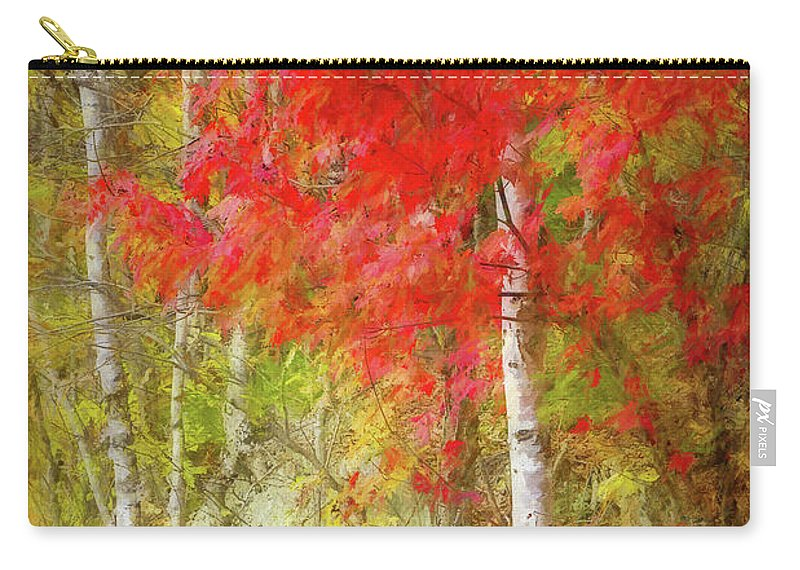 Photography Carry-all Pouch featuring the digital art Birch Trees In Autumn by Terry Davis