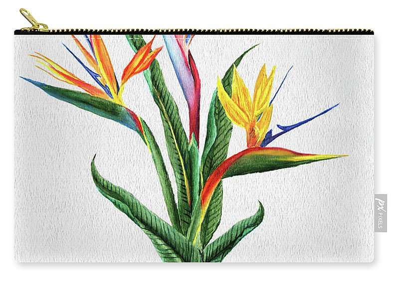 Bird Of Paradise Carry-all Pouch featuring the painting Bird Of Paradise by Peter Piatt