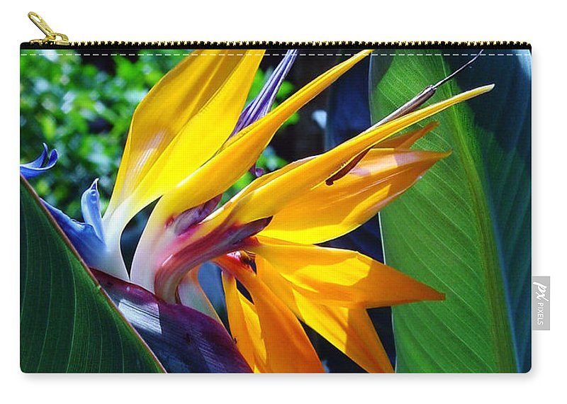 Flowers Carry-all Pouch featuring the photograph Bird Of Paradise by Susanne Van Hulst