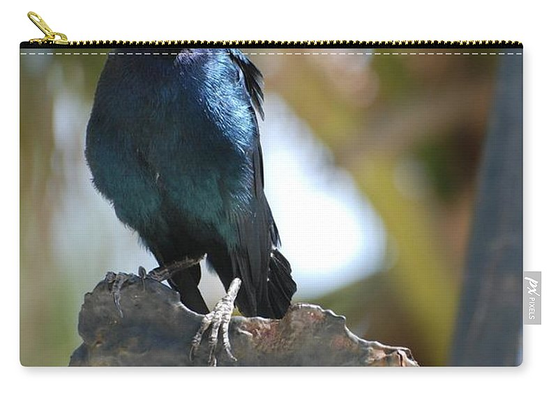 Bird Carry-all Pouch featuring the photograph Bird On An Anchor by Rob Hans