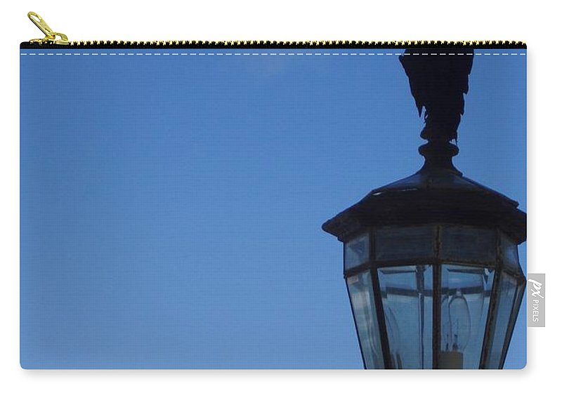 Bird Carry-all Pouch featuring the photograph Bird On Lamplight by Deborah Crew-Johnson
