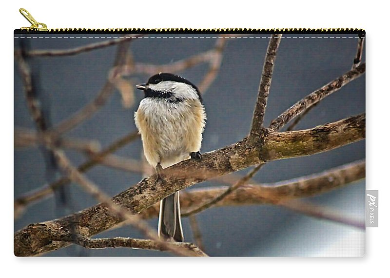 Alone Carry-all Pouch featuring the photograph Bird Song by Catherine Melvin