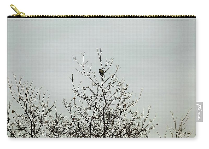 Carry-all Pouch featuring the photograph Bird005 by Jeff Downs