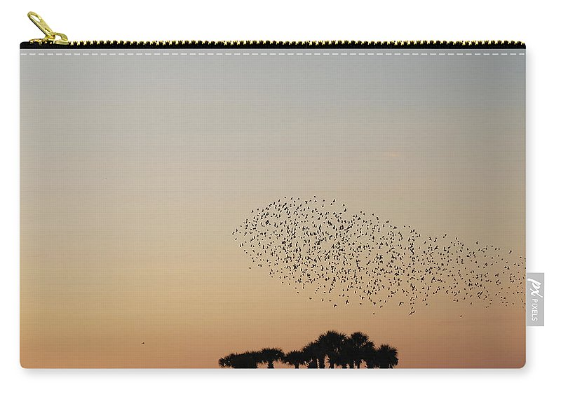 Nature Carry-all Pouch featuring the photograph Birds In The Sun by Rob Hans