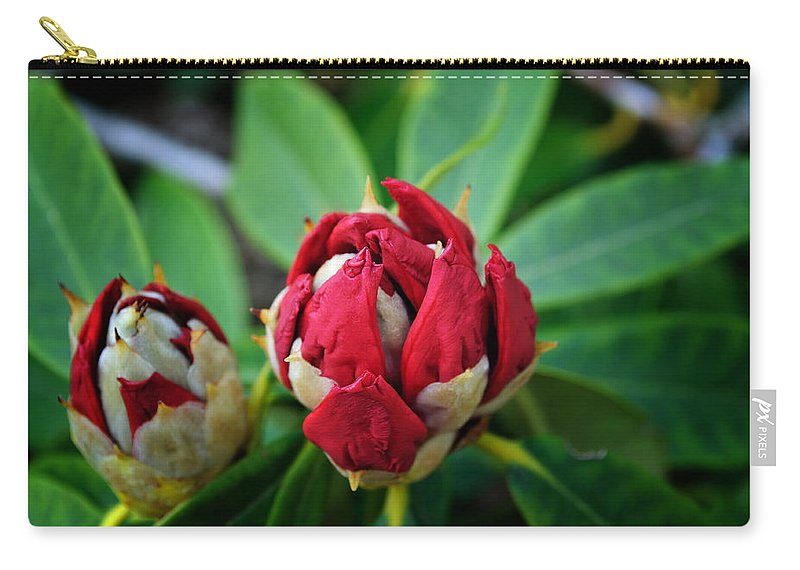 Rhododendron Carry-all Pouch featuring the photograph Birth Of A Rhoddy by Tikvah's Hope