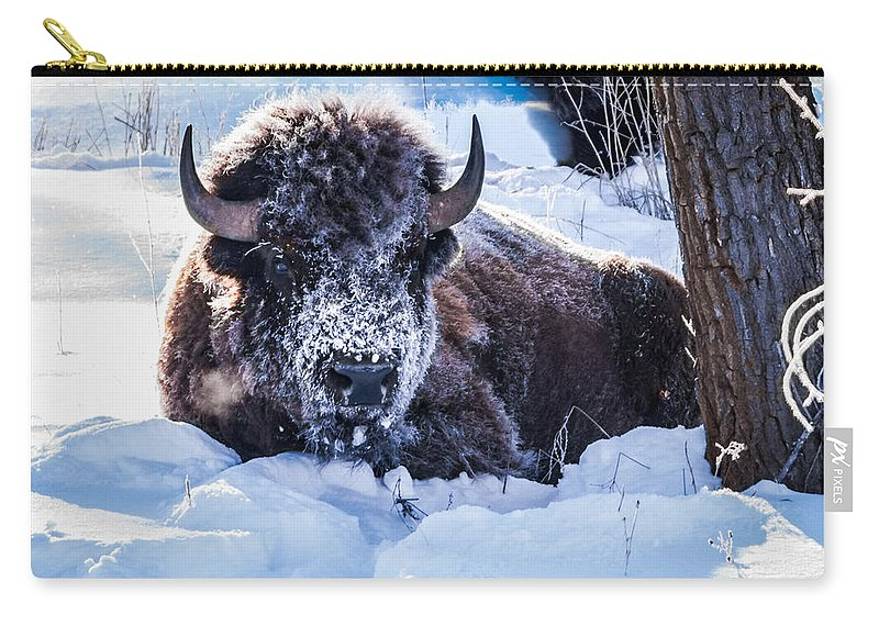 Bison Carry-all Pouch featuring the photograph Bison At Frozen Dawn by Yeates Photography