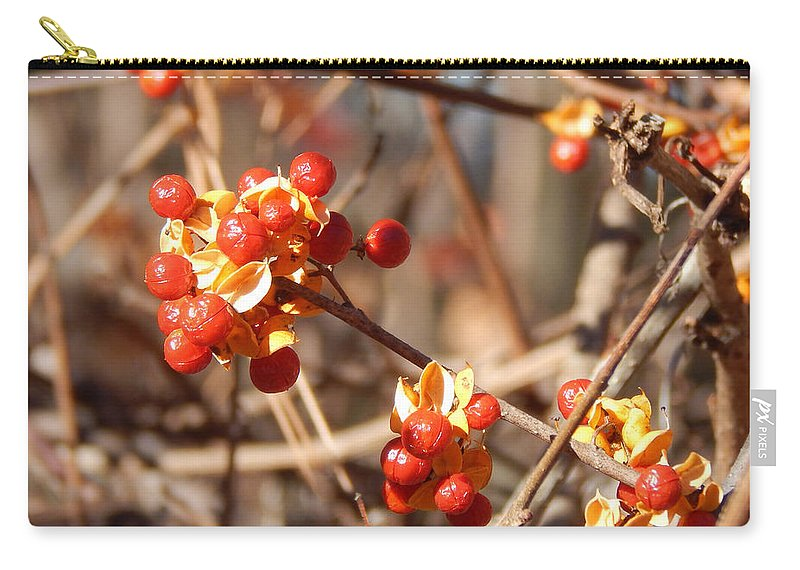 Bittersweet Carry-all Pouch featuring the photograph Bittersweet by Lisa Cassinari