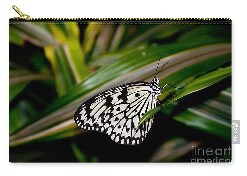 Butterfly Carry-all Pouch featuring the photograph Black And White Beauty by Anna Serebryanik