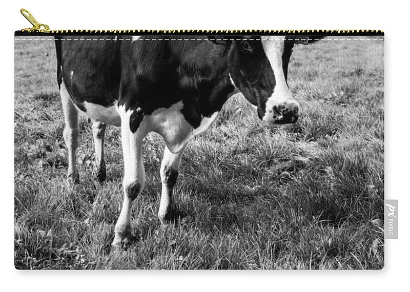 Black Carry-all Pouch featuring the photograph Black And White Cow by Pati Photography