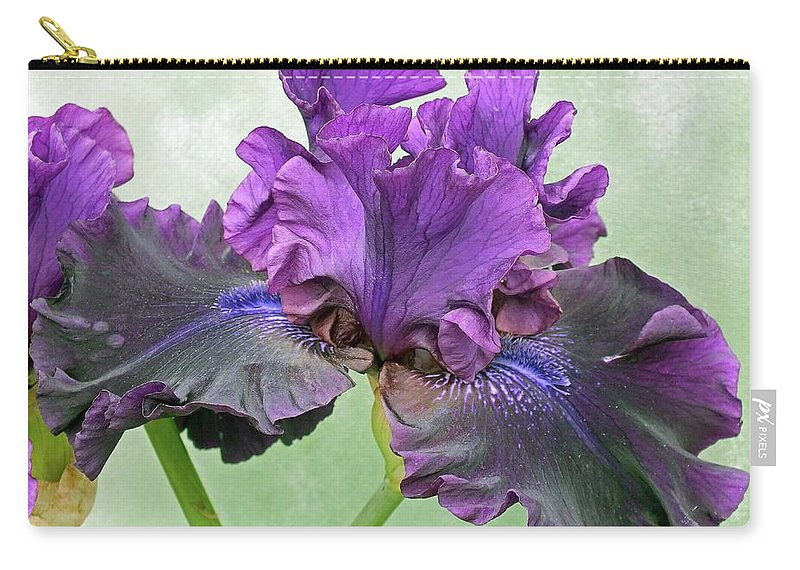Bearded Iris Carry-all Pouch featuring the photograph Black Bearded Iris by Cindy Treger