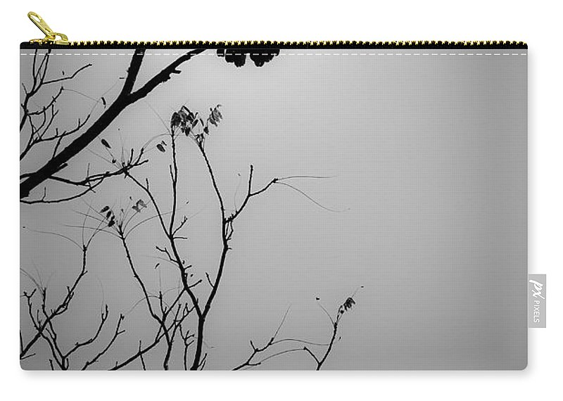 Black Carry-all Pouch featuring the photograph Black Buzzard 6 by Teresa Mucha