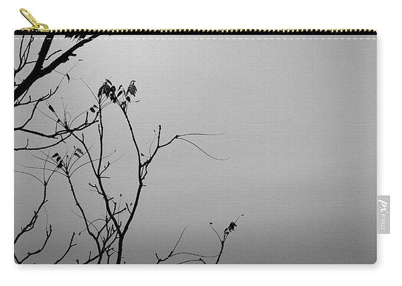 Black Carry-all Pouch featuring the photograph Black Buzzard 7 by Teresa Mucha