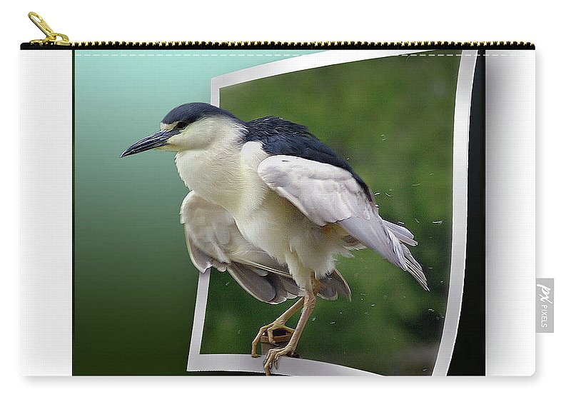 2d Carry-all Pouch featuring the photograph Black Crowned Night Heron by Brian Wallace