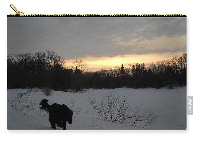 Dog Carry-all Pouch featuring the photograph Black Dog Exploring Snow At Dawn by Kent Lorentzen