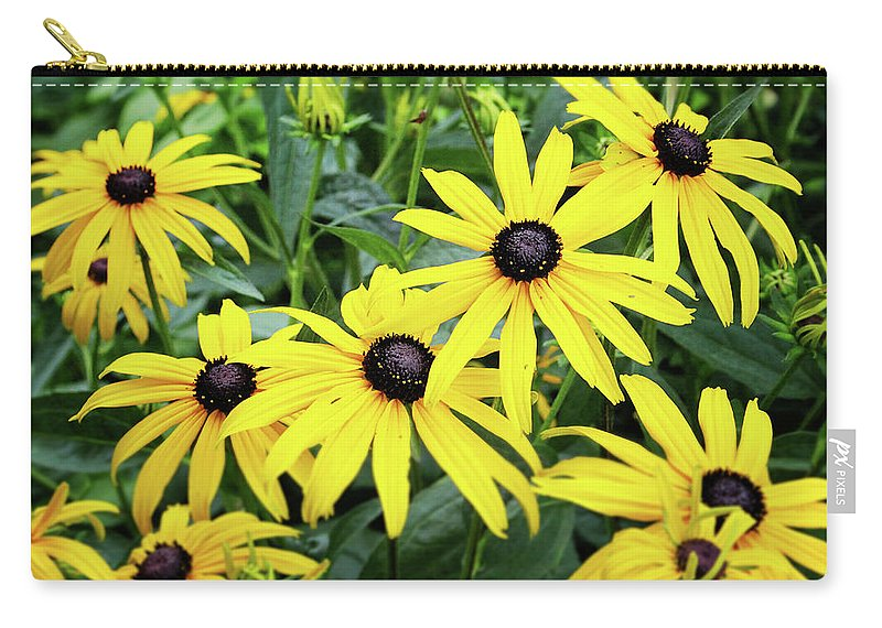 Daisies Carry-all Pouch featuring the photograph Black Eyed Susans- Fine Art Photograph by Linda Woods by Linda Woods