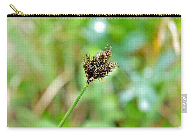 Black Carry-all Pouch featuring the photograph Black Grass by Robert Meyers-Lussier