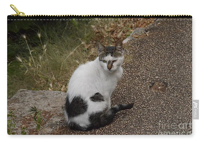 Cat Carry-all Pouch featuring the photograph Black Heart Cat by Elaine Berger
